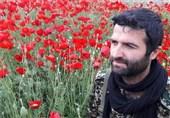 تشییع باشکوه پیکر شهید مدافع حرم در ساری / پیکر شهید رادمهر در زادگاهش آرام گرفت + تصاویر