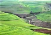 """افزایش 20 درصدی تولید محصولات کشاورزی و پرداخت بدون تاخیر حقوق کارگران """"کشتوصنعت مغان"""" پس از ابطال واگذاری"""