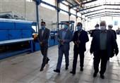 انتقاد عضو کمیسیون صنایع و معادن مجلس از واردات بیرویه