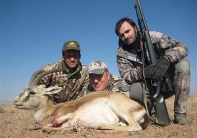 اصلاح قانون شکار در دستور کار فراکسیون محیط زیست مجلس/ بیشتر حیوانات شکارشده، جوان هستند