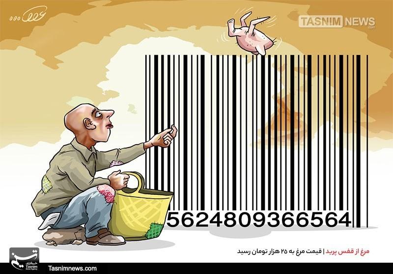 کاریکاتور/ مرغ از قفس پرید | قیمت مرغ به 25 هزار تومان رسید