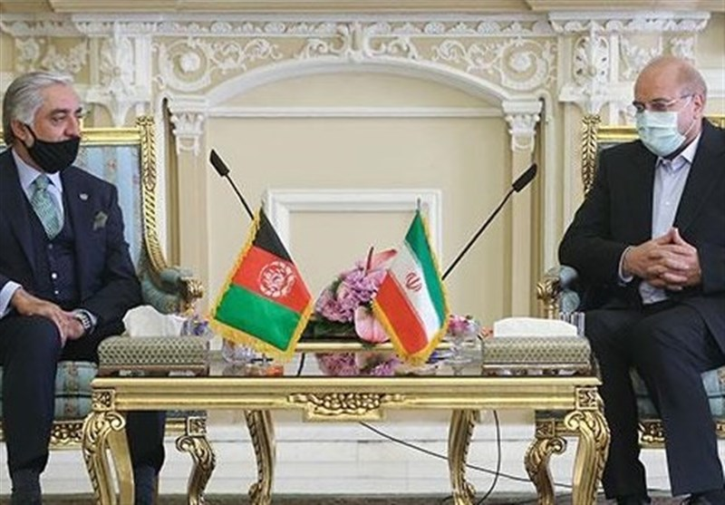 Speaker Underlines Iran's Support for Afghan Constitution, Government