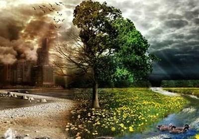 لزوم تدوین گزارش جامع از وضعیت محیط زیست کشور
