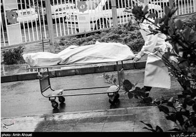آخرین آمار کرونا در ایران| رکورد جدید تعداد فوتیهای کرونا با فوت ۳۳۷ بیمار