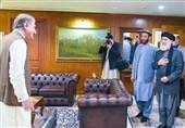 گزارش| کاربران افغان در فضای مجازی: خانه دوم حکمتیار کجاست؟