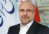 Iran's Parliament Speaker Keeps Up Efforts to Rally Support for Palestine