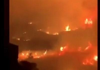 وقوع آتشسوزی گسترده در جنوب عربستان+عکس
