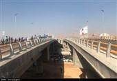 پای انسان الگوی ساخت پلهای ضد زلزله میشود
