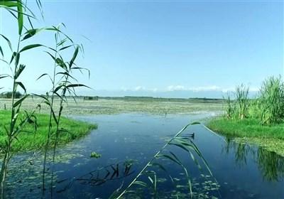 """مستندی از زندگی پرخطر """"محیطبانان"""" جلوی دوربین رفت/ داستان انسانهایی که سهم طبیعت را میدزدند!"""