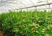 3360 با بهرهبرداری از شهرکهای کشاورزی لرستان مشغول به کار میشوند