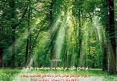 جلوهای از برکات عصر ظهور در دعای ماه رمضان / سرورِ اهل قبور با ظهور قائم(عج)