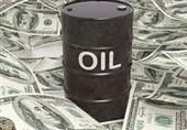 ماجرای حساب خاص به صحن مجلس کشیده شد/شریعتی: دولت ارزهای نفتی را در حسابهای خاص بلوکه کرده + فیلم