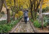 بحران آب در ایران|جولان کمآبی در منطقه عشایری درگه و بانکول / ادامه زندگی روزمره ساکنان غیرممکن شده است