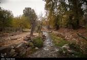 پاییز هزار رنگ در کرمانشاه + فیلم