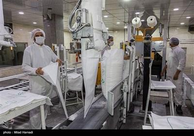 عرضه بدون محدودیت شکر در بازار/ شکر مصرفی خانوار کیلویی ۸هزار و ۷۰۰ تومان