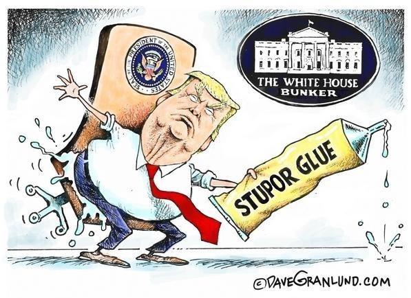 دونالد ترامپ , هنرهای تجسمی , کاریکاتور , عکس ,