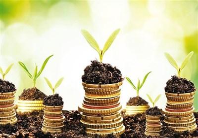 ۱۰ میلیون دلار اعتبار در قالب طرح معیشت جایگزین به منطقه سیستان تخصیص یافت