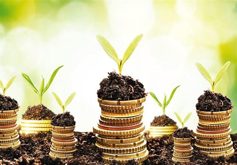 10 میلیون دلار اعتبار در قالب طرح معیشت جایگزین به منطقه سیستان تخصیص یافت