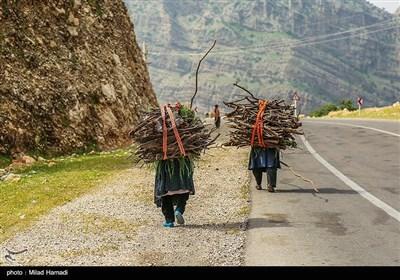 دختران این خانواده روزانه به چشمهای که در پشت کوهستان قرار دارد رفته و آب می آورند وبرای پخت غذا و در زمستان برای گرم کردن خود از هیزوم های درخت بلوط از دل کوههای مشرف به محل سکونت آنها تهیه میکنند