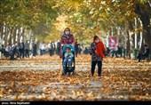تهیه شناسنامه مردمی برای درختان کهنسال در کرمانشاه / سرانه فضای سبز کرمانشاه به 9.2 مترمربع میرسد