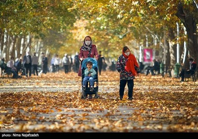 جلوه پاییز در بوستان های مشهد