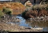 تسنیم بررسی کرد؛ چرا طرح تفکیک زباله از مبدا موفق نشد/ پسماند چالش اصلی استان مازندران