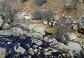 """مردم منطقه """"سرخون"""" با دو چالش خشکسالی و آلودگی آب، دست و پنجه نرم میکنند"""