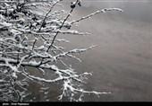 هواشناسی ایران 99/11/29| بارش برف و باران 4 روزه در 19 استان/ دما 12 درجه سرد می شود