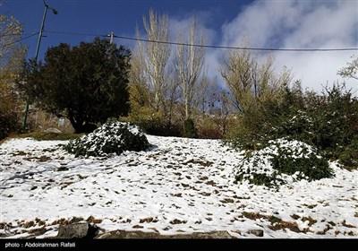 بارش برف در ارتفاعات گنجنامه همدان