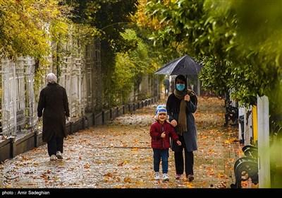 طراوت باران پاییزی در شیراز