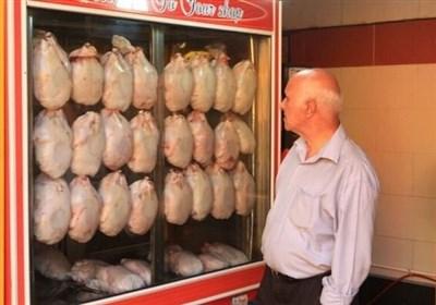 مرغ را ۲۴ ساعته ارزان می کنیم!