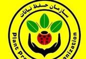 سازمان حفظ نباتات: انجمن وارد کنندگان سم و کود آمار نمیدهد، در برنامهریزی به مشکل خوردیم