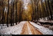 هواشناسی ایران 99/9/10|بارش 5 روزه برف و باران در برخی استان ها/ 2 سامانه بارشی در راه است