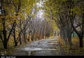 جلوههای پاییزی سنندج به روایت تصویر