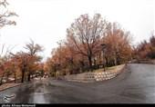بارش پاییزی باران در شهرکرد به روایت تصویر
