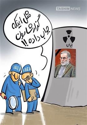 کاریکاتور/ توقف حضور جاسوسان آژانس بین المللی انرژی اتمی در ایران