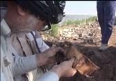 ادامه عملیات تفحص و کشف پیکر شهدا در شرق دجله+فیلم