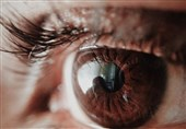 Scientists on Verge of Creating Artificial Vision via Brain Implants