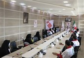 """طرح """"شهید سلیمانی"""" با مشارکت امدادگران هلالاحمر استان بوشهر آغاز شد + تصاویر"""