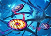 Scientists Develop Component for Neuromorphic Computer