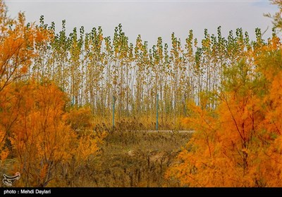 Beauties of Iran's Arasbaran Region in East Azarbaijan