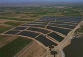 «معجزه آبخیزداری»|تأثیرات حیرت آور اجرای عملیات آبخوانداری در حوزه آبخیز آب باریک بم