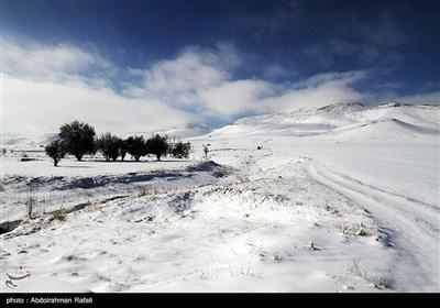 طبیعت برفی استان همدان