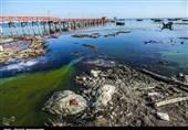 فرصتسوزی دولت روحانی برای نجات خلیج گرگان/30 درصد خلیج خشک شد اما دریغ از یک اقدام عملی