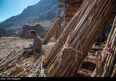 بوریا بافی زرقان - فارس
