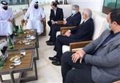 تاکید صالحیامیری بر حمایت قطر برای بازگشت کاراته به المپیک