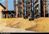 حمل و بارگیری 70 هزار تن ذرت وارداتی از بندر چابهار آغاز شد