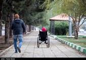 مناسبسازی فضای عمومی برای معلولان در مازندران متوقف شد + فیلم