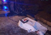 واژگونی و آتشسوزی مرگبار پژو 206 در بزرگراه آزادگان + تصاویر