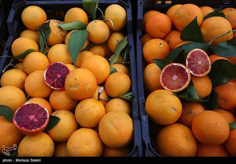 ذخیره سازی 40 هزار تن میوه برای بازار شب عید